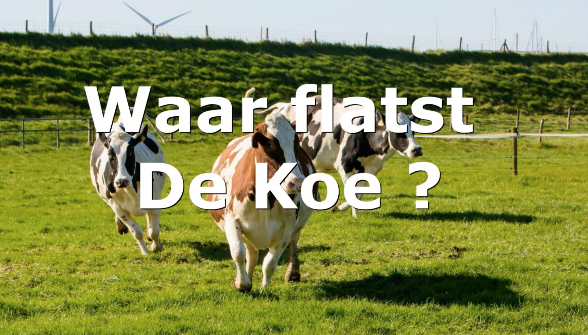 Koeienflats 2021 - Kijk snel of jij de winnaar bent van de hoofdprijs van 500 euro!